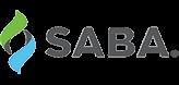 Logo Saba - HR consulting