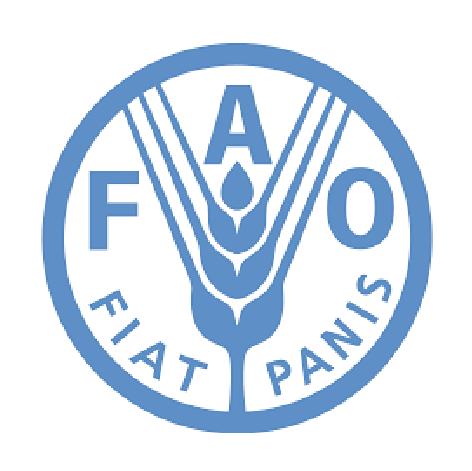 Logo FAO - HR consulting